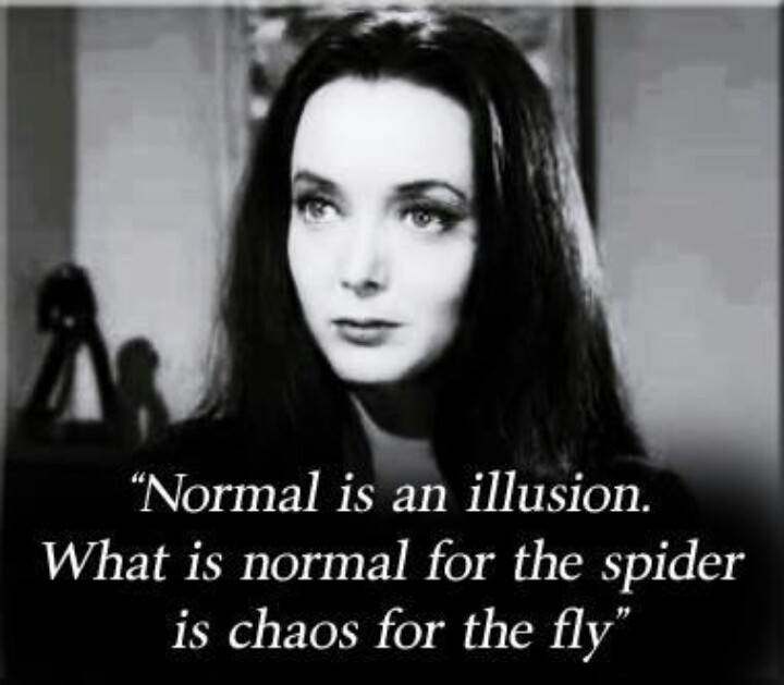 Morticia addams quotes normal is an illusion normal is an illusion learning a new normal after narcissistic abuse altavistaventures Choice Image